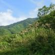 飛騨高山へ