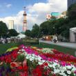 夏、週末札幌散歩
