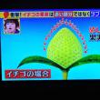 4/25 イチゴの種はどれ?