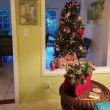 クリスマスツリー ぎりぎりセーフ