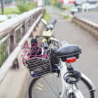 奥琵琶湖でのサイクリング