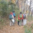 彩の国・・・比企の丘・・・鳩山の里の・・・石坂の森のおそい秋の風景・・・冬鳥の鳴き声も聞かれます