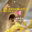 『♪神田川』の歌のように・・・。