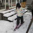 孫娘スキーを始める