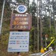 愛知県の滝  豊根村 蔦淵