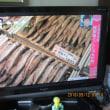 常盤平団地の53年189 北海道シシャモの思い出2