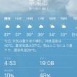 暑い!関西出張