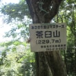 14 茶臼山(神宮寺山城230m:安佐北区)登山  山頂部に到着