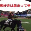 UMAJO&初心者の大歓迎です!!【第10回】競馬が好きな人の集まる飲み会&東京競馬場観戦~当日は毎日王冠です~