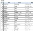 「日本語がそのまま通じる言葉一覧」について考える