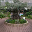 神戸(市庁舎 国際会館)