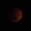 赤いブルームーン
