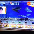 4/20 寿司ネタの原型を見たら食べにくいですか?