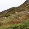 木曽駒ヶ岳登山と千畳敷カールの紅葉