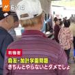 山口4区にモリカケ告訴の候補者、安倍首相ヒヤヒヤ 日刊スポーツ