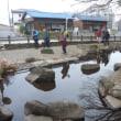 静寂の黒川清流公園