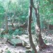 林興産 山登り野郎日記 第二話「景色をもとめて」