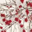 赤いナナカマドの実に積雪!