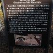 富士を見る(8)