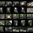 大文字山(032) 俊寛山荘~楼門の滝~水場~三角点~火床~俊寛山荘