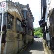 矢掛町のキジトラ