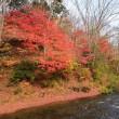 熊本小国町遊水峡紅葉