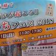 逸品と音楽のイベント『第5回いちフェス2018』が10月21日(日)に開催されます@八幡北口一番街