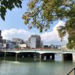 少しずつ葉が色づき始めましたね。ちょっと気分を落ち着かせるために川沿いへ。