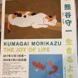 熊谷守一に惹かれて About Morikazu Kumagai