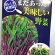 紅菜苔(コウサイタイ)
