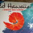 ハワイの甘エビはボタン海老