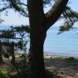 和歌山・瀬戸内海国立公園「友ヶ島」②