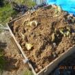 堆肥作り 順調です