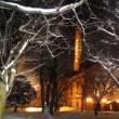 雪のサッポロビール園