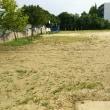 三小運動場の雑草刈作業