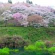 4月19日  三春「さくら湖」
