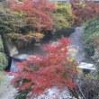皆野町  日野沢の紅葉