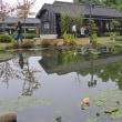 台湾ツアー 嘉義市・全台最大日式建築・檜意森活村(Hinoki Village) 2