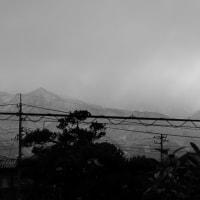 今日は穏やかな冬の朝。12月20日の朝の光景。