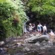 調音の滝の渓流とぶどう狩り