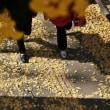 八王子いちょう祭り 黄葉