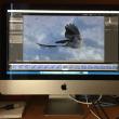 iMac が来た(3)
