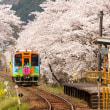 春の樽見鉄道 木知原駅