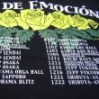 RIO DE EMOCION ツアーT
