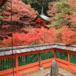2017 京都紅葉巡り後半