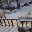 雪の中から行方不明のスコップを探しながら青色申告作業をする。