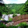 滝沢公園太鼓橋