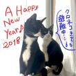 2018年 ご挨拶