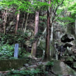 山道を辿って松笠観音寺に参拝
