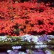 『紅葉の想い出』 香嵐渓
